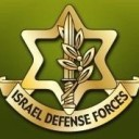The israeli defense forces